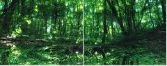 Water Mirror 17, WM-788,787 (diptych) – Risaku Suzuki, Forest, Water, Reflection