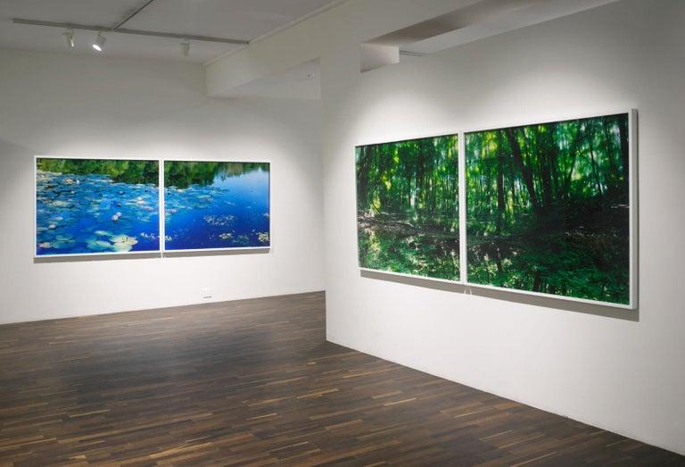 Water Mirror 17, WM-788,787 (diptych) – Risaku Suzuki, Forest, Water, Reflection For Sale 1