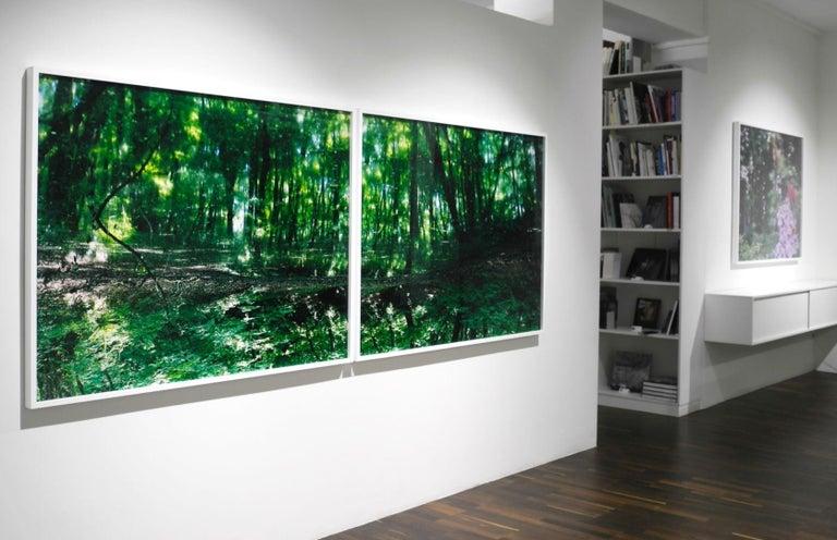 Water Mirror 17, WM-788,787 (diptych) – Risaku Suzuki, Forest, Water, Reflection For Sale 2