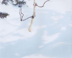 WHITE 07,H-88 – Risaku Suzuki, Nature, Snow, Forest, White, Winter, Japan Art