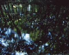 Water Mirror 14,WM-75 – Risaku Suzuki, Nature, Tree, Water, Reflection, Japanese