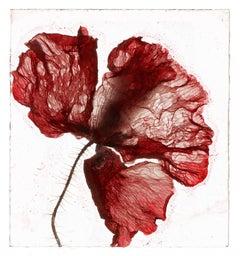 Now is not a time  – Brigitte Lustenberger, Flower, Still Life, Art, Flora