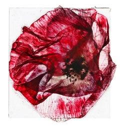 Sometimes they sing back to me  – Brigitte Lustenberger, Flower, Still Life, Art