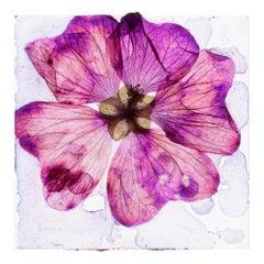 When the heart is freshly bleeding  – Brigitte Lustenberger, Flower, Still Life