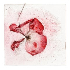 The memory of our pain – Brigitte Lustenberger, Flower, Still Life, Colors