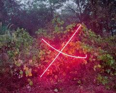 X – Jung Lee, Neon, Light, Installation, Symbole, Red, Nature, Landscape, Trees
