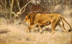 """Lion on the move"",  19th Century watercolour by German painter Wilhelm Kuhnert"