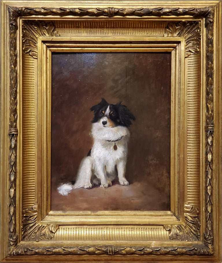 "Oil Painting of a Dog by R Hendschel  19th Century Oil on wood panel and measures 11"" wide by 15"" tall.   The dog is either an Australian Shephard or a border collie.  This portrait of a dog measures 20"" wide by 24"" tall in the frame."