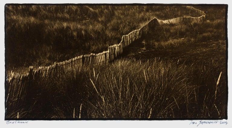Ian Sanderson Black and White Photograph - Bretagne-Platinum Palladium print on vellum over 24 carat gold, limited edition