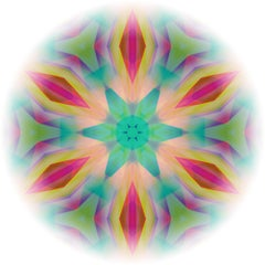 Light Mandala1 - Signed limited edition pigment print, Color Photography, Square