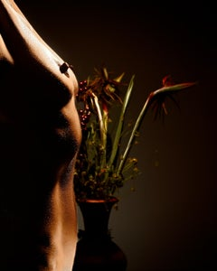 Still life and nude - Signed limited edition Peter Ridge archival pigment print
