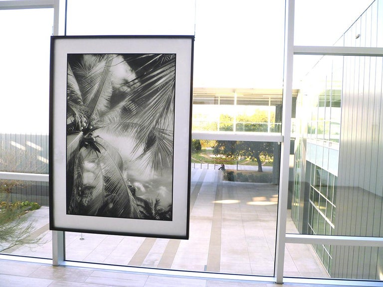 This is a double sided work, that hangs from the sides of the frame.  Alfano has mounted the negative and positive image of