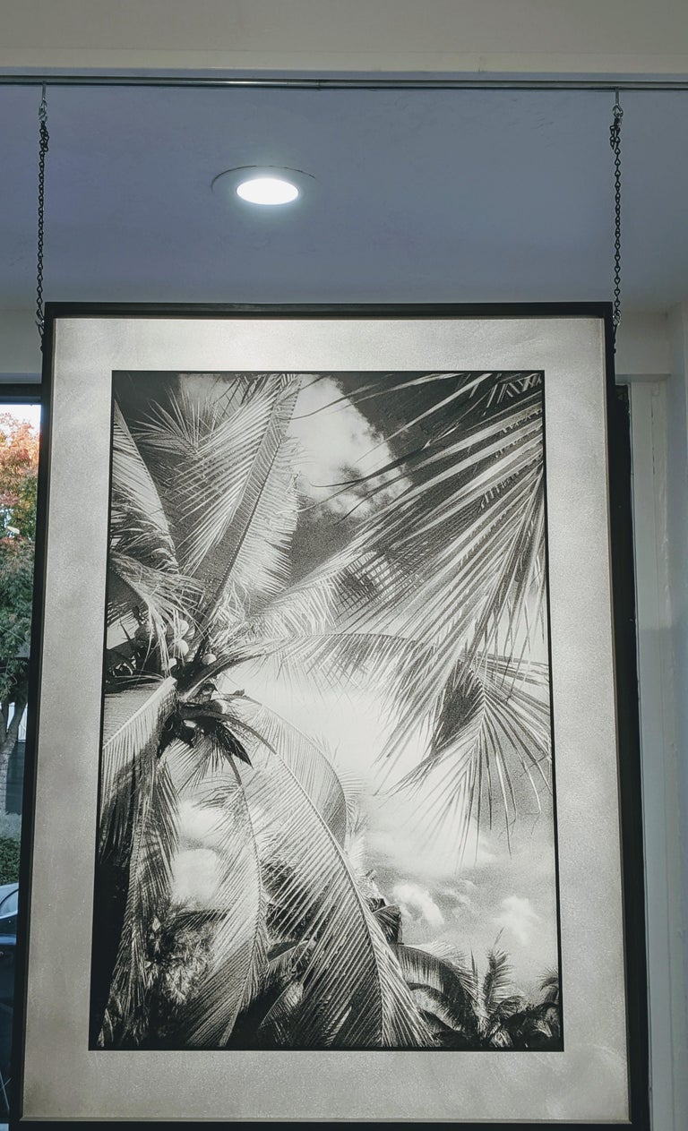 Lumphini Park - Infrared Photograph on Double Sided Aluminum For Sale 1