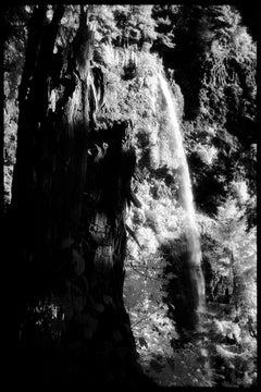 Multnomah Falls I - Black & White Photograph of Oregon National Park