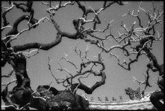 Da Ci'en, Ci'an China - Black and White Pigment Print, (2/10)