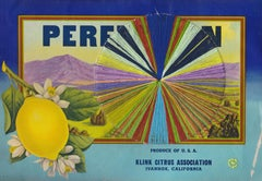 Perfection- Vintage Image of a Lemon Label with Embroidery Thread, Yellow&Blue