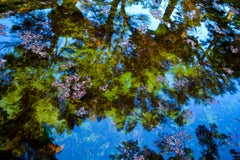 Reflection No. 1- Meditative Print of Water and Trees. in Blue + Green + Purple