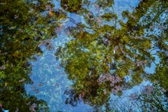 Reflection No. 5- Abstract Landscape Photograph on Metal in Green+Blue+Purple