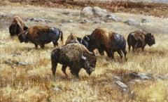"""""""Mighty Grazers"""", Robert Fobear, Oil on Canvas, Field, Bison, Wild Animals"""