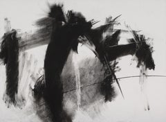 """PETER WISE """"Untitled"""" charcoal black and white contemporary drawing"""