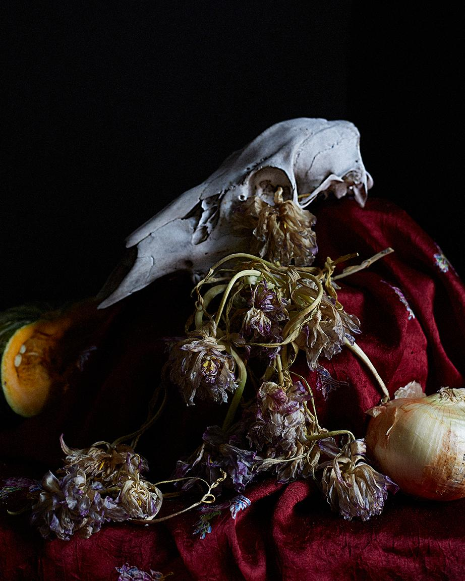 Flower Arrangement II, Original Still Life Photography, Karen Epstein