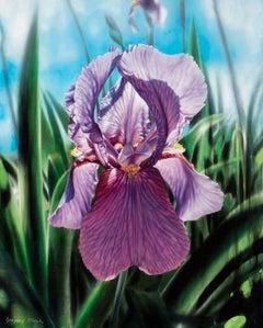 Purple Iris, Oil Painting