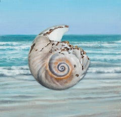 Shell 2 , Oil Painting