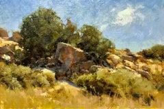 """""""High Desert Hillside"""" Oil Painting"""