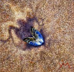 Washed Ashore North Sea Beach VI