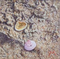 Washed Ashore North Sea Beach VII