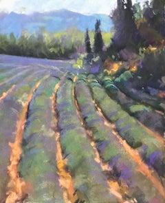 Roussillon Lavender
