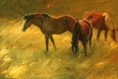 """Medicine Hat"" Oil painting"