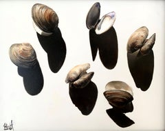 """Clam Shells and Their Shadows"" Oil Painting"