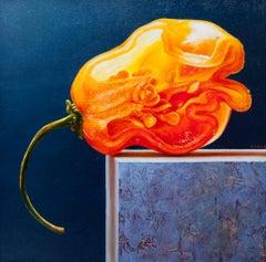 """Habenero,"" Oil painting"