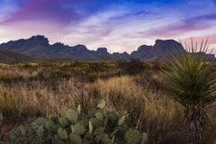 Untitled 4913 - Blue & purple sunset, West Texas landscape w/ mountains & cacti