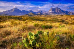Big Bend 1 - Texas nature landscape with blue sky, mountains, tall grass & cacti