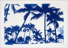 Acapulco Palm Sunset, Cyanotype on Watercolor Paper, 100x70cm, Limited Edition