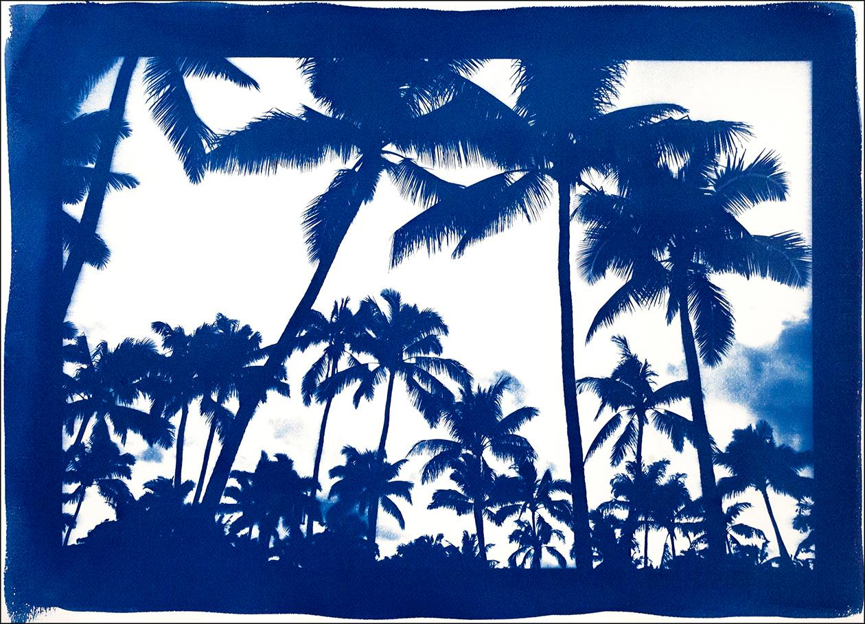 Acapulco Palm Sunset, Blue Border, Cyanotype on Watercolor Paper, 100x70cm