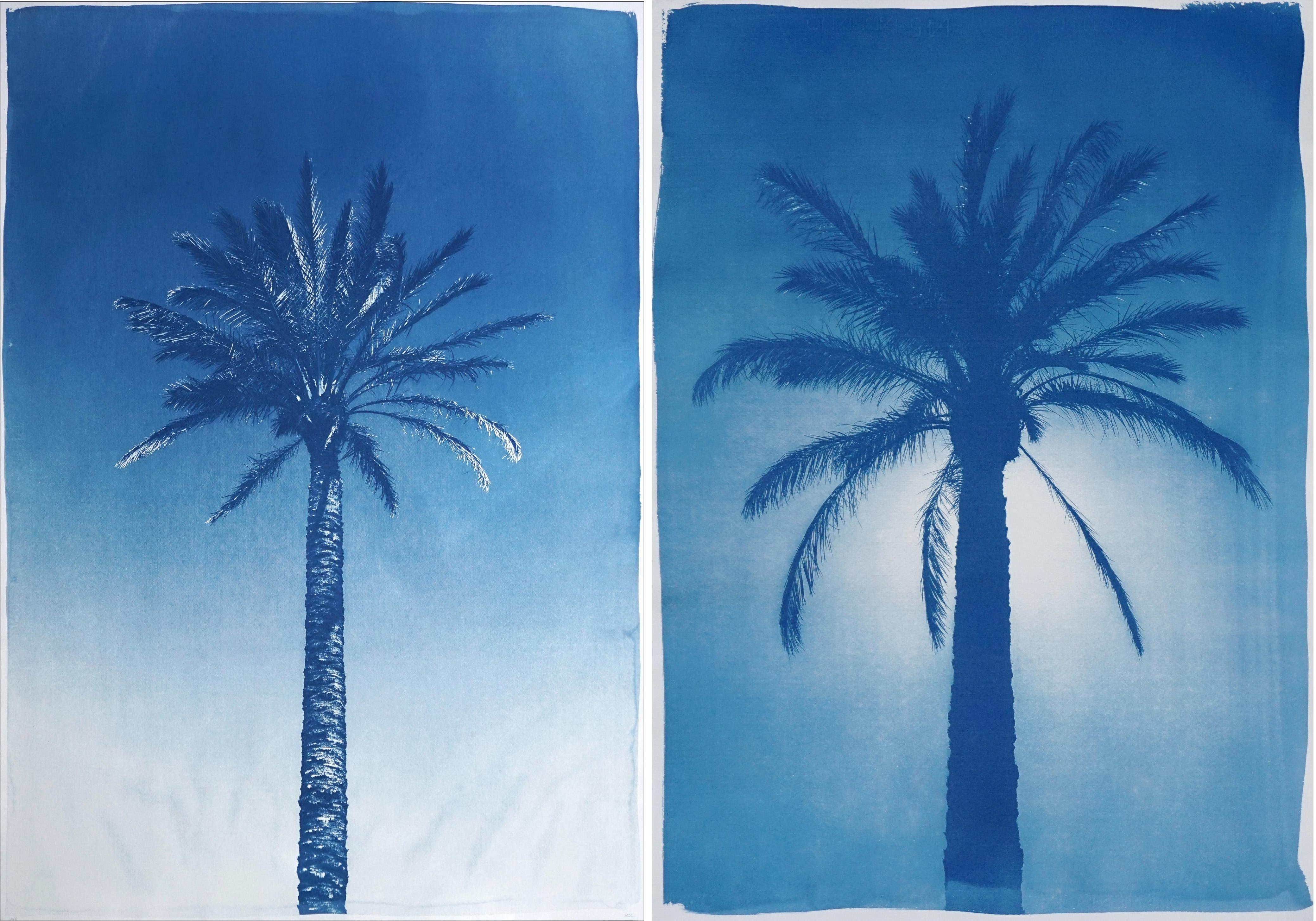 Duo of Blue Egyptian Palms, Botanical Diptych Cyanotype on Paper, Vintage Modern