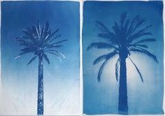 Duo of Egyptian Palms, 100x140 cm, Botanical Cyanotype on Paper, Vintage Modern