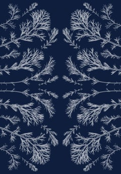 Plant pressed Cyanotype, Kaleidoscopic, Handmade in Sunlight, Limited Edition