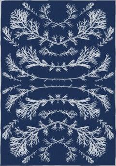 Botanical Composition, 100x70cm, Original Cyanotype on Watercolor Paper