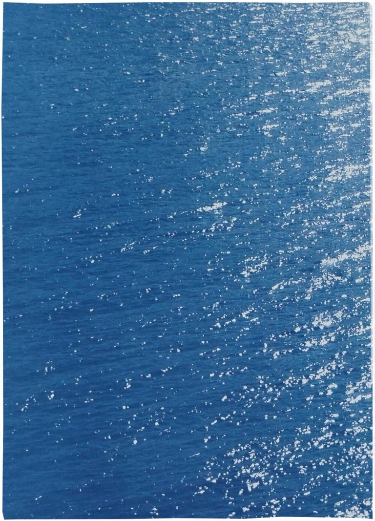 This is an exclusive handprinted limited edition cyanotype. This beautiful triptych is called