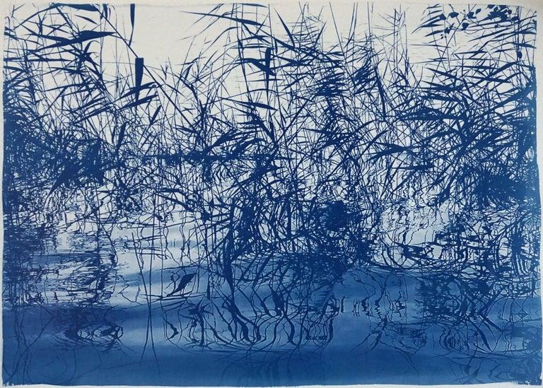 Kind of Cyan Landscape Print - Mystic Louisiana Marsh, Cyanotype on Watercolor Paper, 100x70cm, Blue Landscape