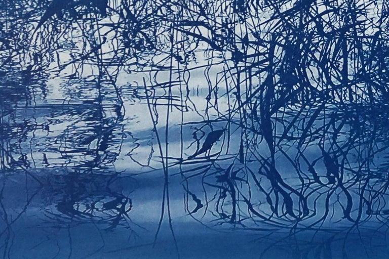 Mystic Louisiana Marsh, Cyanotype on Watercolor Paper, 100x70cm, Blue Landscape  For Sale 1