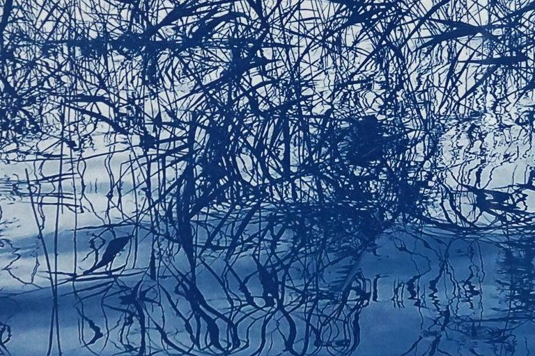 Mystic Louisiana Marsh, Cyanotype on Watercolor Paper, 100x70cm, Blue Landscape  For Sale 2