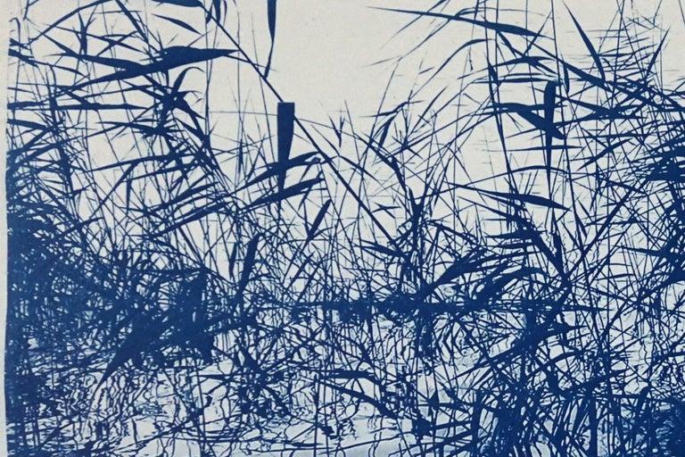 Mystic Louisiana Marsh, Cyanotype on Watercolor Paper, 100x70cm, Blue Landscape  For Sale 6