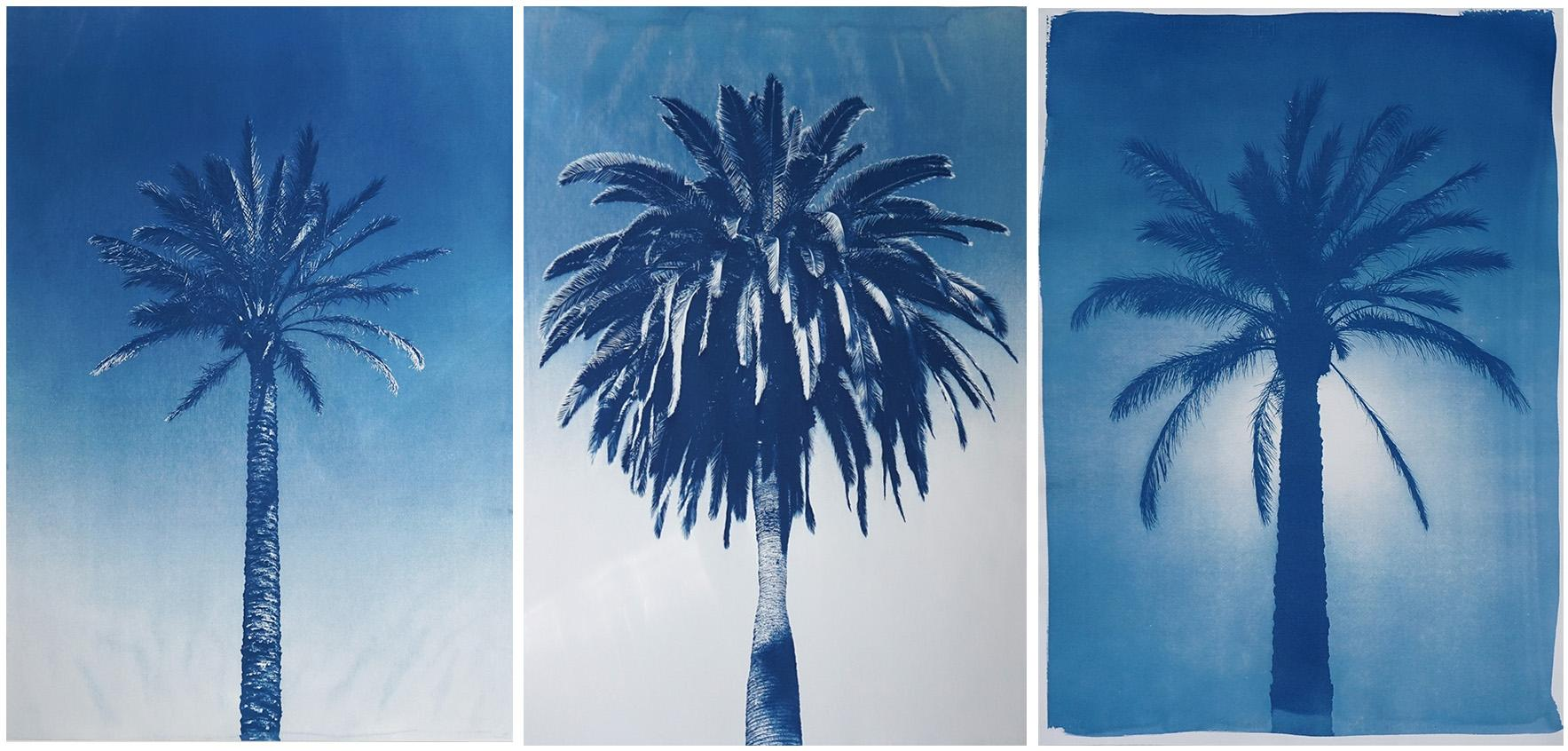 Blue Triptych of Trio of Palm, Botanical Multipanel Cyanotype, Watercolor Paper