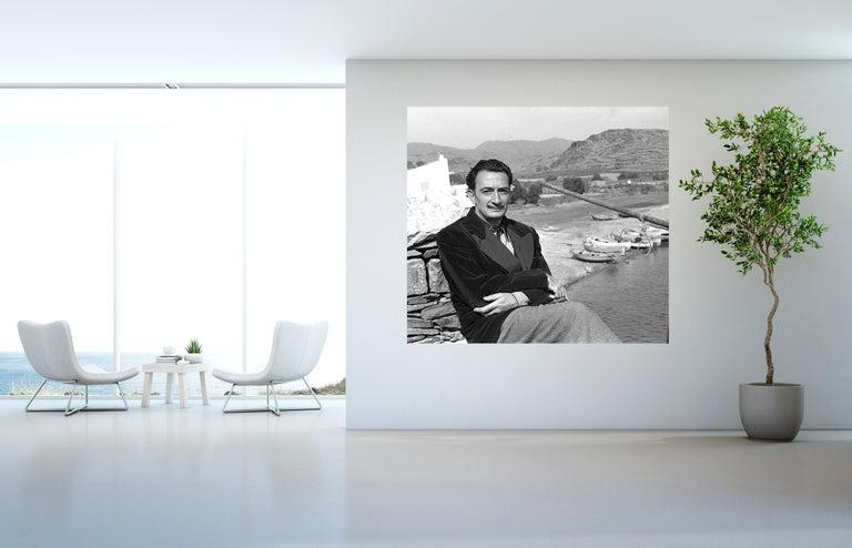 Salvador Dali 5    47 in x 70 in - Photograph by Jose Luis Beltran Gras