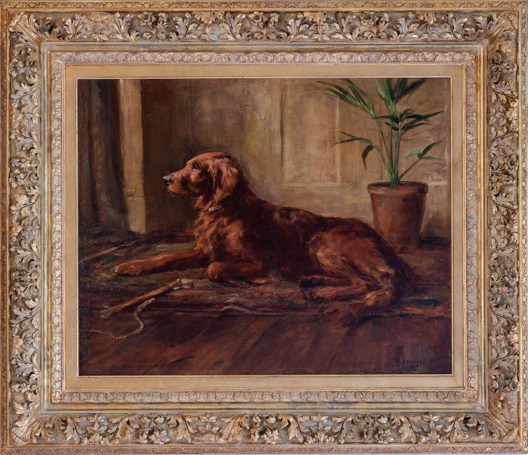"""PORTRAIT OF AN IRISH SETTER"" - Painting by ARMOUR George Denholm (Lt.-Col.)"
